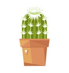 green cactus in ceramic pot isolated icon vector image