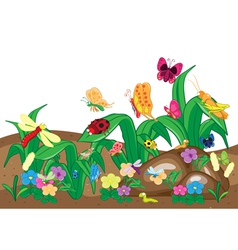 Insects family on the ground and tree Insects cart vector image vector image