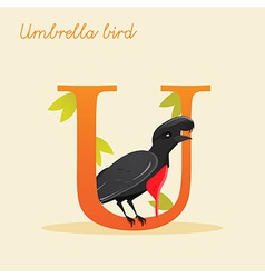 Animal alphabet with umbrella bird vector image