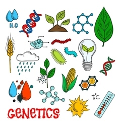 Genetic technologies in agriculture sketches vector