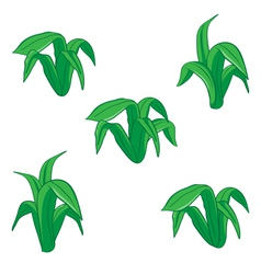 green floral cartoon vector image vector image