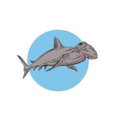 Hammerhead shark swimming vector