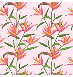 Pink Bird of Paradise flowers pattern vector image vector image
