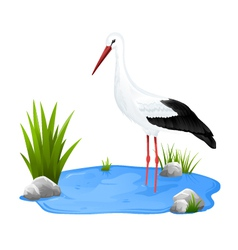 Small pond with white stork vector image vector image
