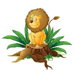 A stump with a big scary lion vector image