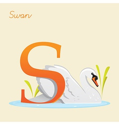 Animal alphabet with swan vector image vector image
