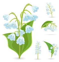 floral collection of small spring flowers Lilies vector image vector image