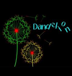 Dandelion scene vector