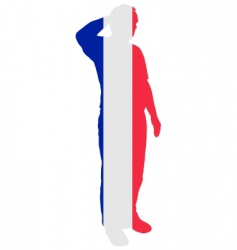 french salute vector image vector image