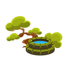 green tree and well bonsai miniature traditional vector image