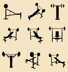 gym equipment vector image