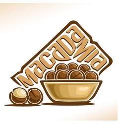 logo for macadamia nut vector image vector image