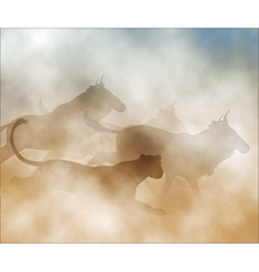 Lioness hunting wildebeest vector image vector image