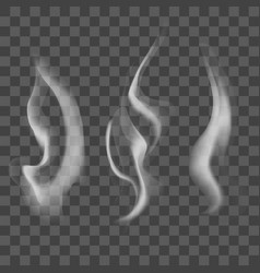realistic steam or smoke texture set vector image vector image