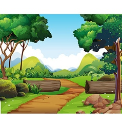 Scene with hiking track and trees vector