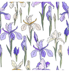 Seamless season pattern with blue and white irises vector