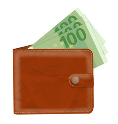 Wallet with banknotes vector