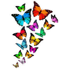 Background with colorful butterflies vector