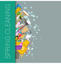 Spring cleaning vector image