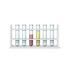 Test tube stand vector