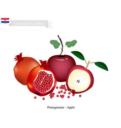 Apple and pomegranate the popular fruits of croat vector