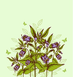 background with bellflower vector image