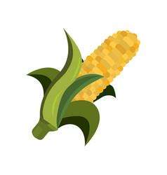 corn icon cartoon style thanksgiving day vector image