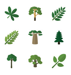Flat icon ecology set of leaves tree maple and vector