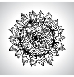 Sunflower flower element for design vector