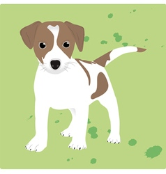 The Dog vector image