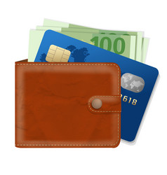 Wallet with credit card and money vector