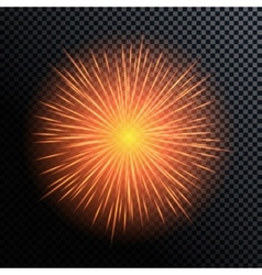 Fireworks salute on a vector