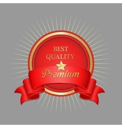 Premium label and ribbon with star and sunburst vector