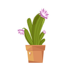 cute potted cactus isolated icon vector image