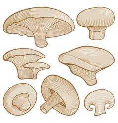 woodcut mushroom icons vector image
