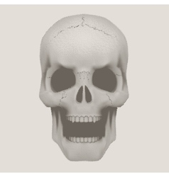 Human skull in vintage halftone style vector