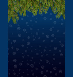 Branches of spruce and night sky snowflakes fly vector
