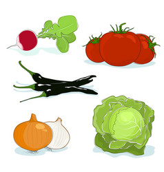 Fresh gardening vegetables isolated vector