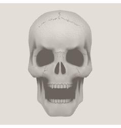 Human skull in vintage halftone style vector