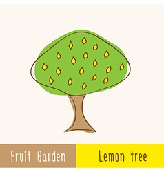 Single garden fruit tree vector