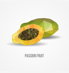 Colorful geometric passion fruit concept vector