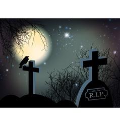 Night at Graveyard vector image