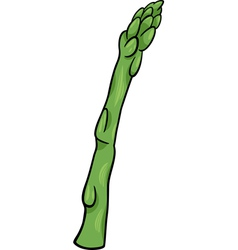 Asparagus vegetable cartoon vector
