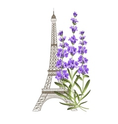 Eiffel tower with lavender vector