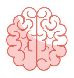 Brain halves flat vector