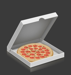Pizza in the box vector