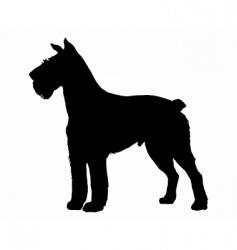 schnauzer silhouette vector image vector image