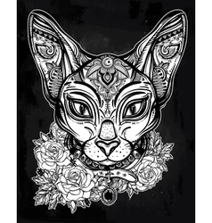 Vintage ornate cat head with floral collar vector image vector image