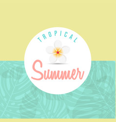 Trendy summer tropical leaves summer background vector
