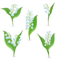 Spring collection of tiny bouquets of lily of the vector
